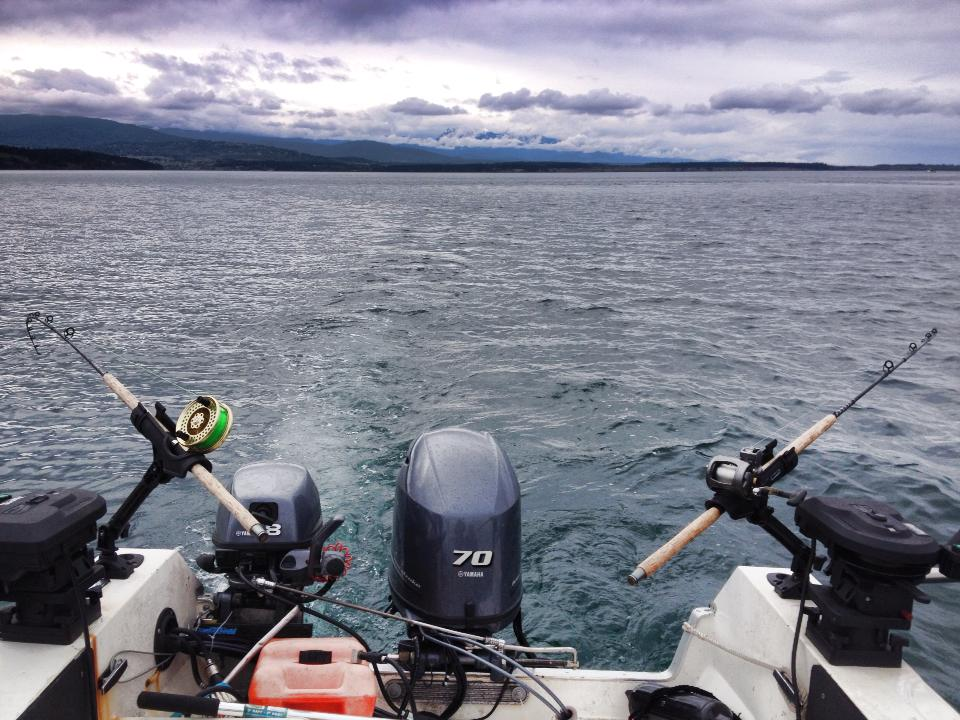 Trolling For Salmon Without A Trolling Motor Go Fish