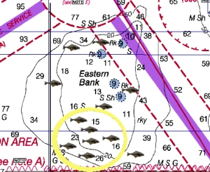 Here's where I target halibut on Eastern Bank.