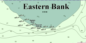 Here's where I target salmon on Eastern Bank on high and low tides. Best depths range from 90 to 130 feet. During an outgoing tide the bait will move into deeper water, so be aware of this and move west and be ready to drop your downrigger balls deeper if needed.