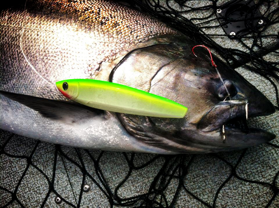 King kandy salmon fishing lures hot new colors for a hot for Salmon fishing lures